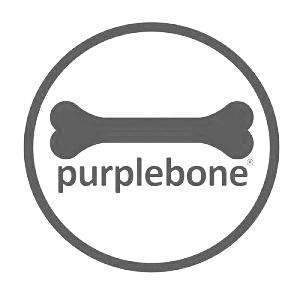 purple-dog-grey