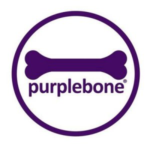 purple-dog